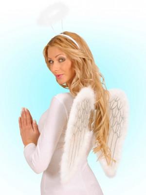 Krila za Angela